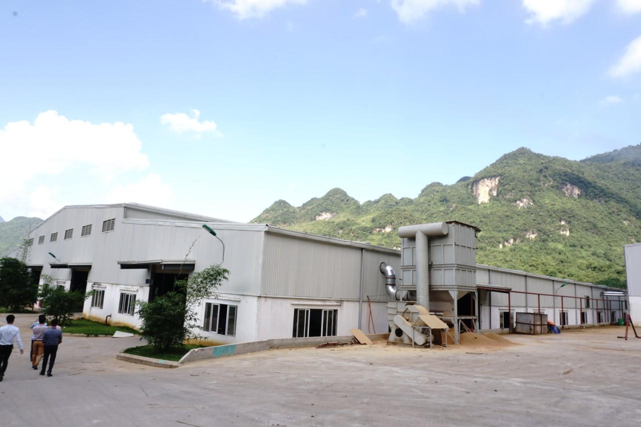 nhà máy BWG