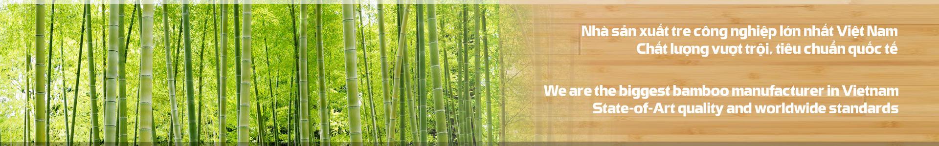 SJF Tre công nghiệp bamboo